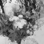 レッスン生徒さんの作品 4/6〜4/16